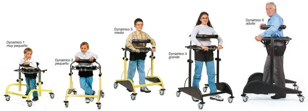 Dynamico - Las distintas tallas
