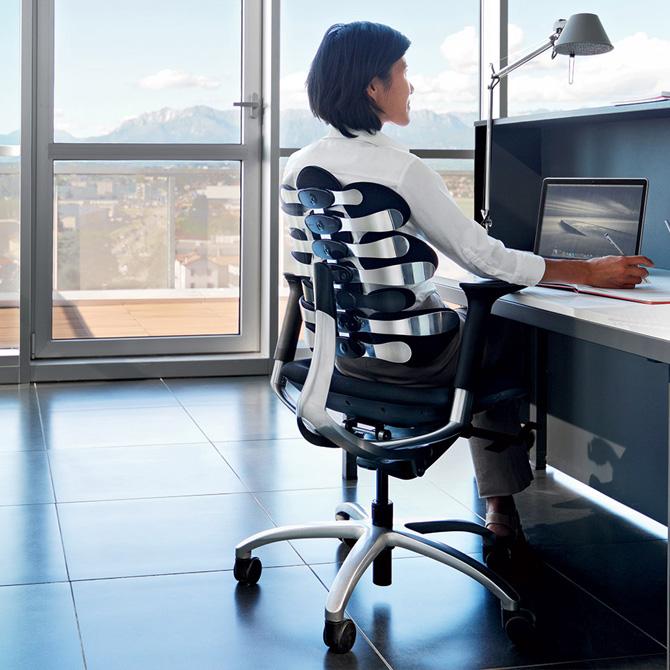 Respaldos posturales Tarta - Múltiples usos (oficina)